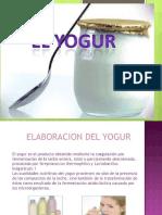 Yogur (1)