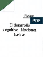 ASPECTOS DE LA COMPETENCIA INTELECTUAL.....pdf
