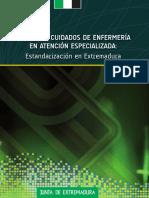 libro_planes_cuidados_especializada.pdf