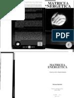 MATRICEA ENERGETICA.pdf