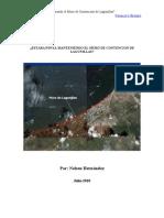 ¿Estara PDVSA haciendole Mantenimiento al Muro de Lagunillas (Zulia)