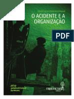 Oacidenteeaorganizacaomiolo e Capa-12!08!2016