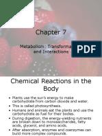 Metabolisme Dan Transformasi