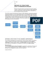 Anatomy of Structure Related to Parkinson Disease