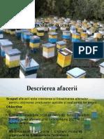 Prezentare Plan de Afacere Apicultura Casian Adelina