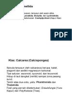Paleontologi07.ppt