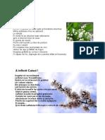 privind-florile.pdf