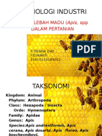 Lebah Madu dalam Entomologi Industri
