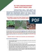 Brosur Investasi Perkebunan Sengon