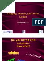 Primr Design