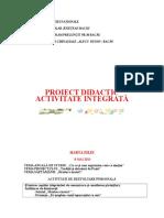 0 Proiect Inspectie Finala Gradul i