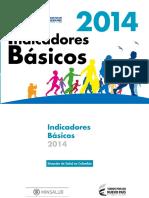 Indicadores Basicos Salud 2014