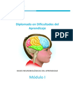 BASES NEUROBIOLÓGICAS DEL APRENDIZAJE