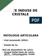 Curs Artrite Cristaline 2017