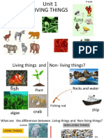 284849659-Unit-1-Living-Things-Natural-Science-3ºlast.pdf