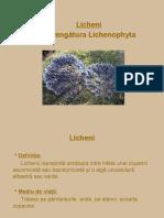 0licheni