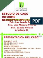 Presentación Final Npp (2)