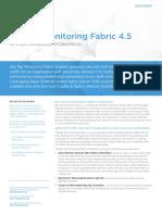 Big Tap Monitoring Fabric v4.5