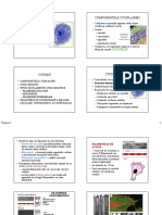CURS 5-4.pdf