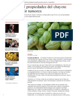 Estudia IPN Propiedades Del Chayote Para Prevenir Tumores - Grupo Milenio