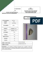 formato de clasificación de rocas sedimentarias.