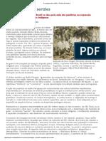 A Conquista Dos Sertões - Revista de História