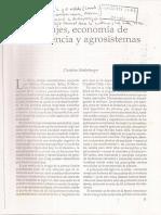 Niederberger Paisajes Economía de Subsistencia