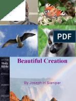 Wonderful Creation
