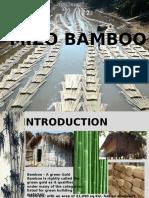 217436597-Mizo-Bamboo.pptx
