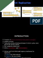 Unit 2 DNA Replication
