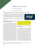 Origen y Migracion de Celulas Troncales