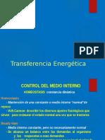 Clase 5 Transferencia Energetica1