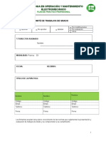 Formato de Practica Profesional TOM 2015