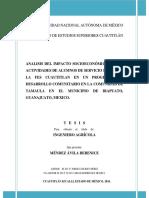 ANALISIS DEL IMPACTO SOCIOECONÓMICO DE LAS ACTIVIDADES DE ALUMNOS DE SERVICIO SOCIAL