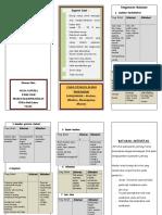 Leaflet Diet jantung dan Batasan Aktivitas.docx