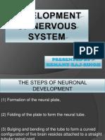 Development of Nervous System-hem