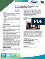 Estimulación-de-Pozos-de-Petróleo-y-Gas1.pdf