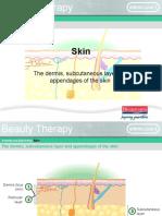 ap-skin-03-101104114402-phpapp01