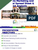 Presentation on Spread Sheet Analysis -20080524