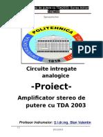 Proiect CIA poli - 8315.docx