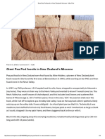 Giant Pea Pod Fossils in New Zealand's Miocene - Mike Pole