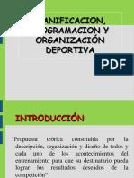 Planificación, Programación y Organizacion