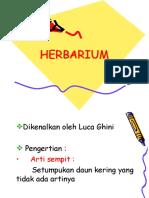 herbararium