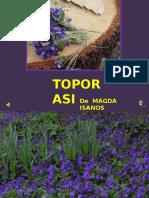 Www.nicepps.ro 23901 Toporasi