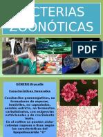 ZOONOTICOS BIOANALISIS 2017