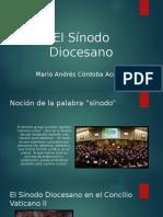 El Sínodo Diocesano
