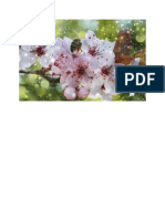 Tavasz, Méh, Montázs, Fantázia, Cseresznyevirágzás
