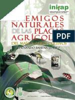 ENEMIGOS NATURALES DE LAS PLAGAS AGRICOLAS DEL MAIZ Y OTROS CULTIVOS.pdf