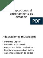 Clase 4 Adaptaciones Al Entrenamiento de Distancia