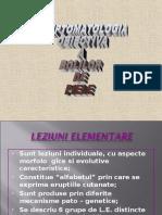 Lp 2 Lez Elem i Adata ( Col, Sol,Lich,Etc)
